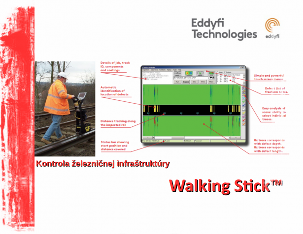 Walking Stick™